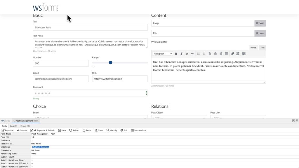 WS Form ACF Tutorial - Form Populated
